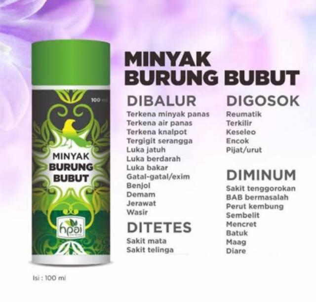 Minyak Herba Sinergi Hpai Minyak Burung Bubut But But 100 Ml Shopee Indonesia