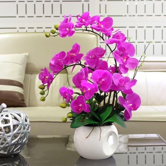 Promo Bunga Anggrek Latex Anggrek Bulan Ungu Anggrek Artificial Orchid Kekinian Shopee Indonesia
