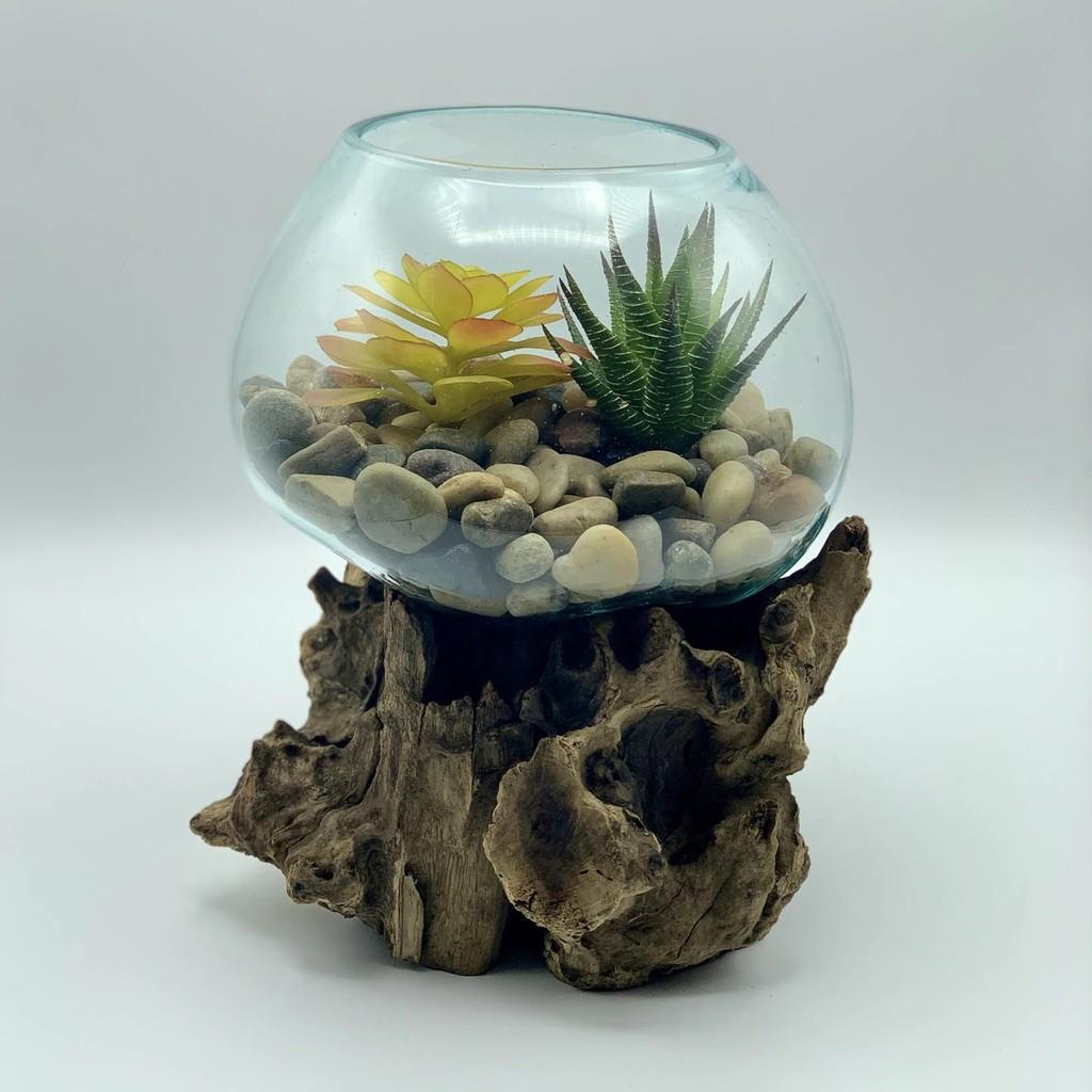 Aquarium Akuarium Ikan Hias Cupang Hiasan Bulat Kecil Aquascape Souvenir Pernikahan Glass On Wood Shopee Indonesia