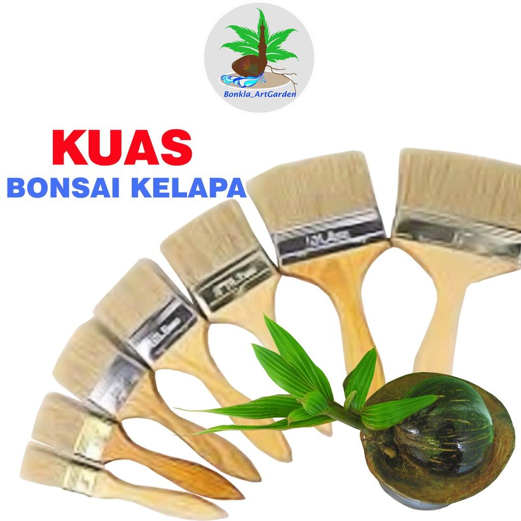 Kuas Bonsai Kelapa Asik Shopee Indonesia