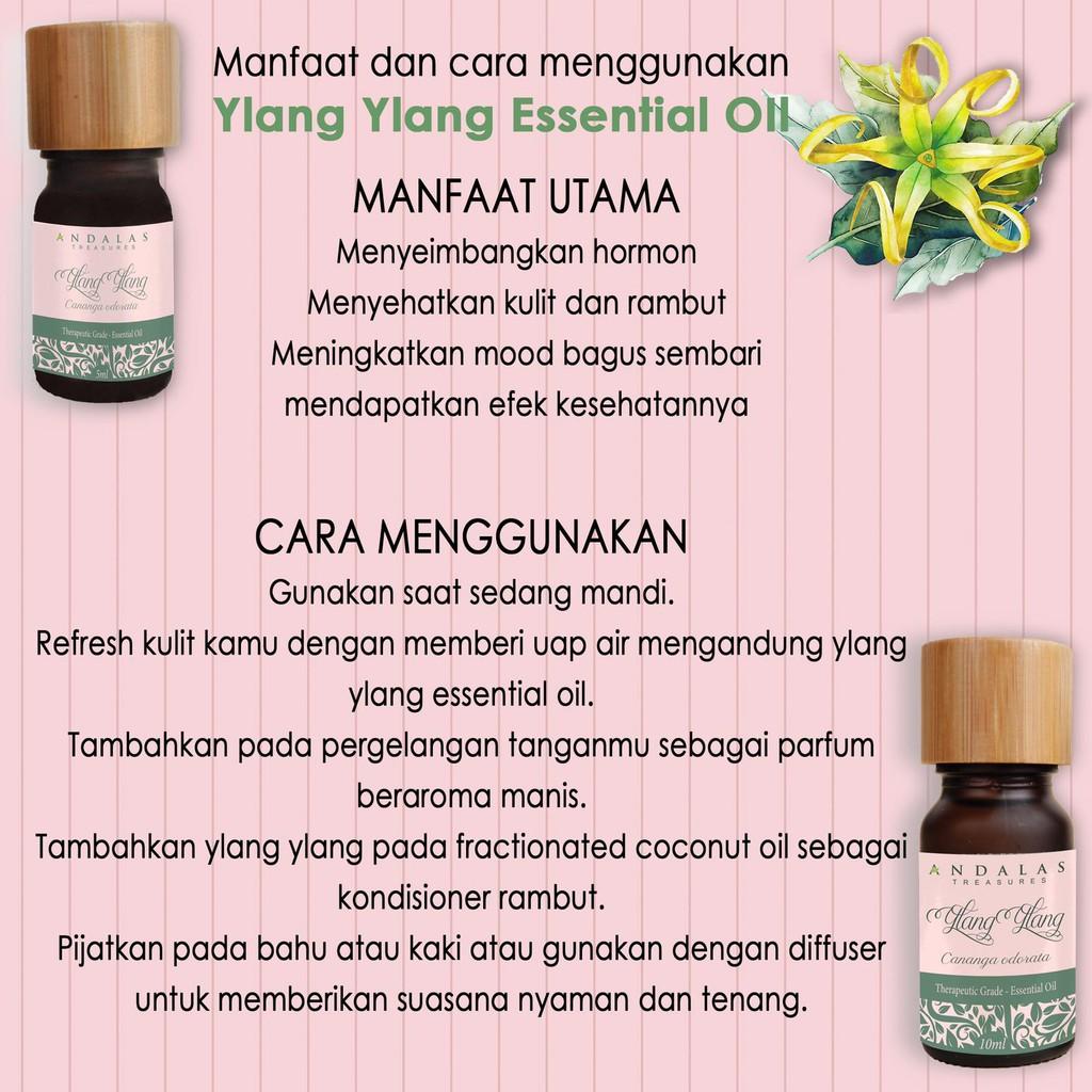 5 Ml Ylang Ylang Essential Oil 100 Miyak Atsiri Kenanga Esential Shopee Indonesia