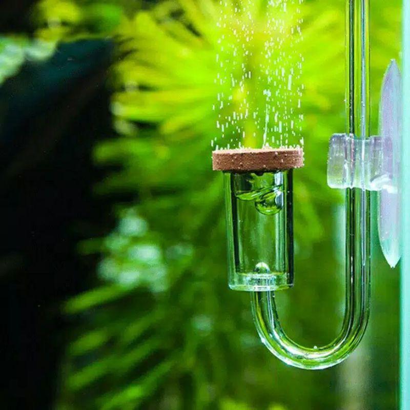 Co2 Diffuser / Diffuser DIY / Diffuser Aquascape