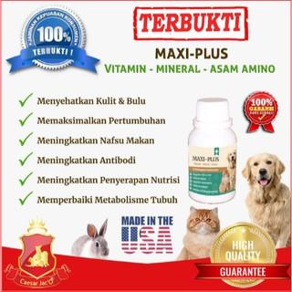 Obat Cacing Albendazole Alben Plus Untuk Anjing Kucing Hewan Shopee Indonesia