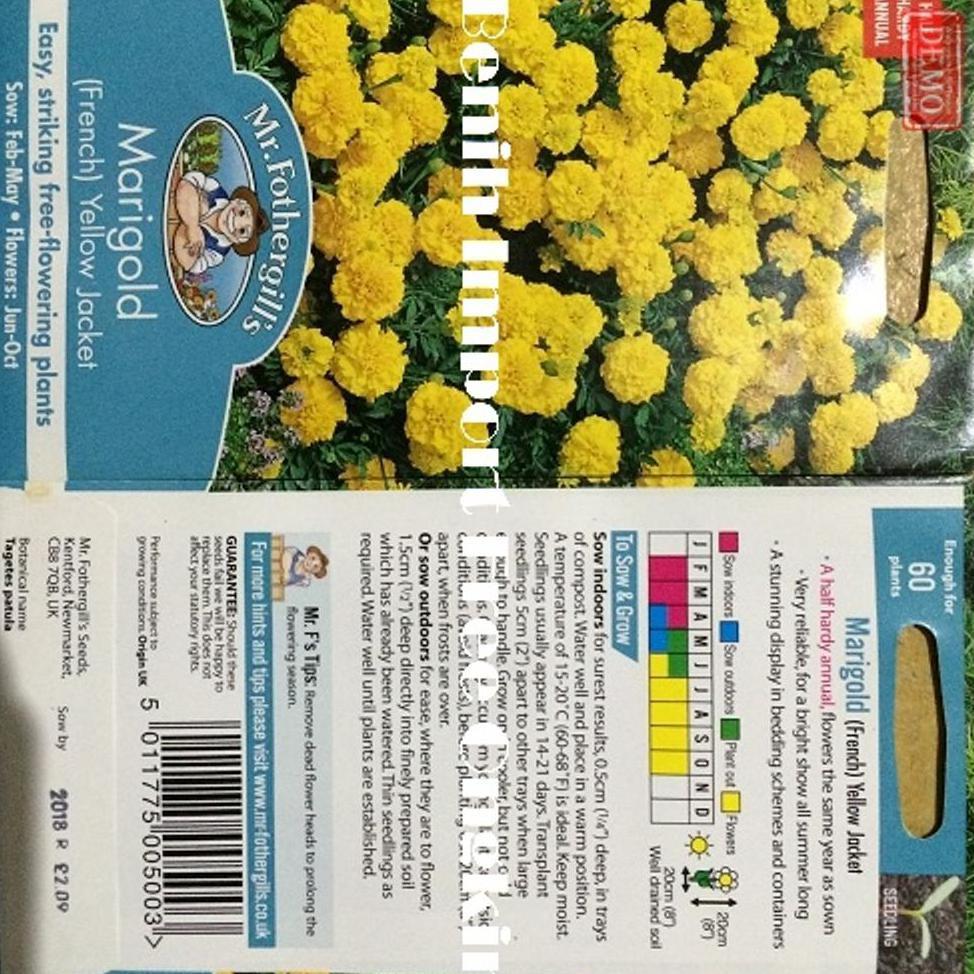 1 Pack 90 Benih Bunga Marigold Naughty Marietta F1 Mr Fothergills Bibit tanaman | Shopee Indonesia