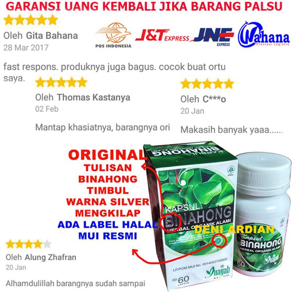 Kapsul Daun Binahong Herbal Organik Alami Banyak Manfaat ...