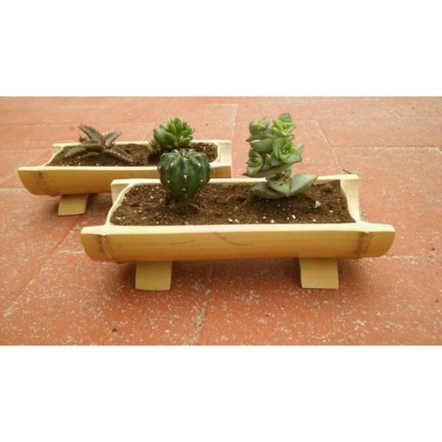 Pot Bunga Bambu Mini Shopee Indonesia