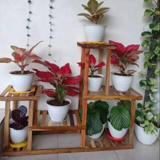 Rak Bunga Kayu Unik Asli Model Minimalis Dan Modern Shopee Indonesia