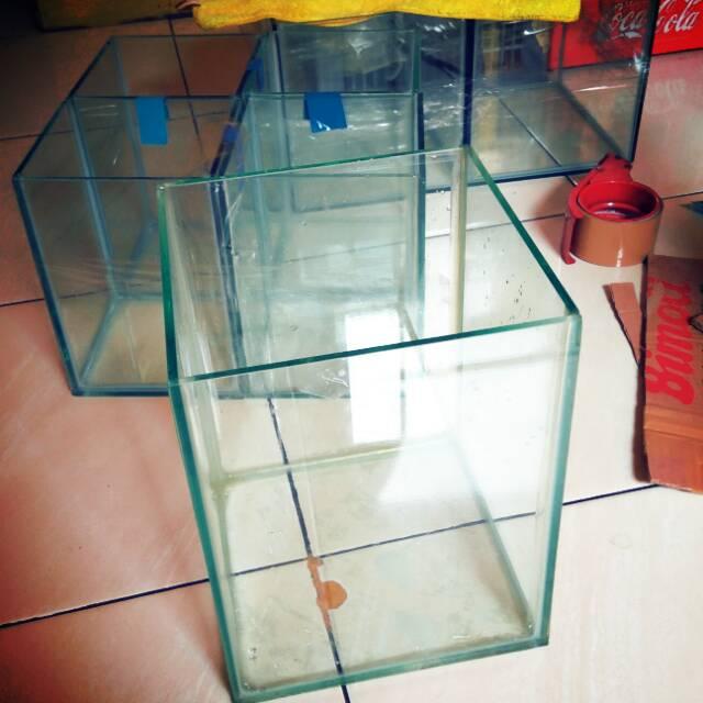 Soliter Aquarium Ikan Cupang Kaca Akuarium 20x20x25 Shopee Indonesia