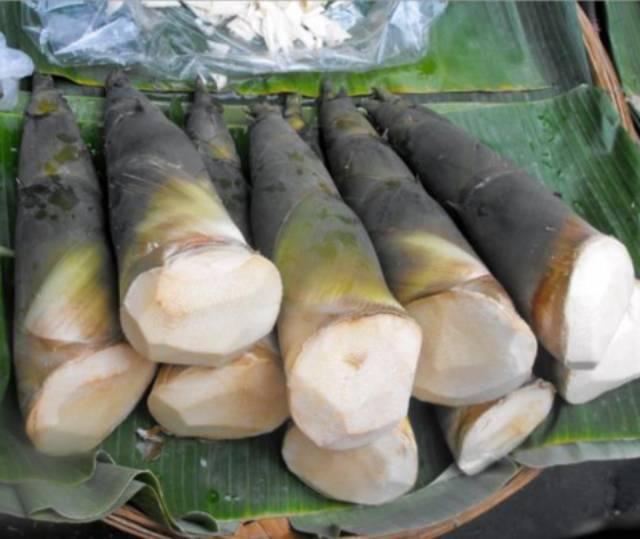 Rebung Bambu Mudaaa Enak Di Kosumsi Asli Original 2 Kg Shopee Indonesia