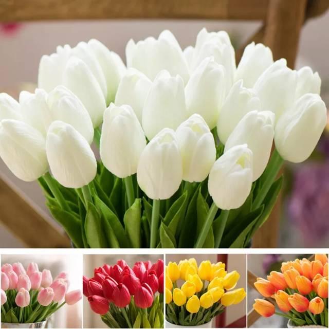 Bunga Tulip Besar Per Tangkai Shopee Indonesia