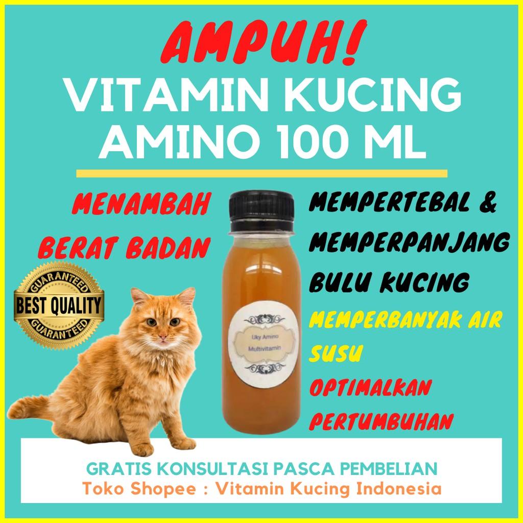 Vitamin Kucing Amino 100ml Multivitamin Kucing Shopee Indonesia