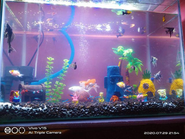 Hiasan Aquarium Spongebob Squarepants Aksesoris Akuarium Spongebob Bikini Bottom Shopee Indonesia