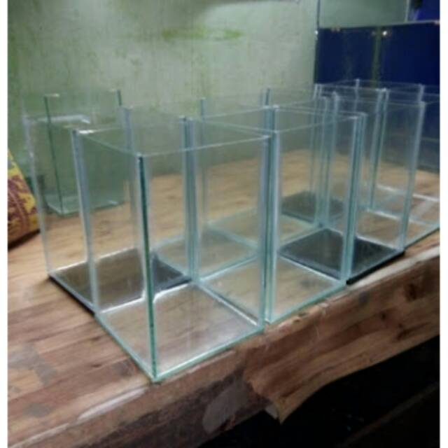 Akuarium Aquarium Kaca Gelas Botol Toples Cupang Guppy Aquascape Murah Ikan Hias Shopee Indonesia