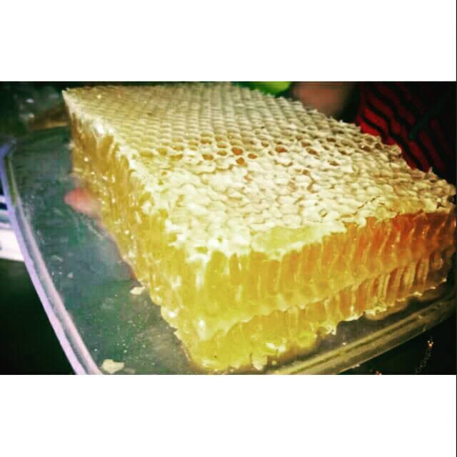 Madu Sarang / Honey Comb Apis Melifera 500 gram