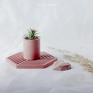 caka concrete mini pot semen aesthetic tanaman bunga hias
