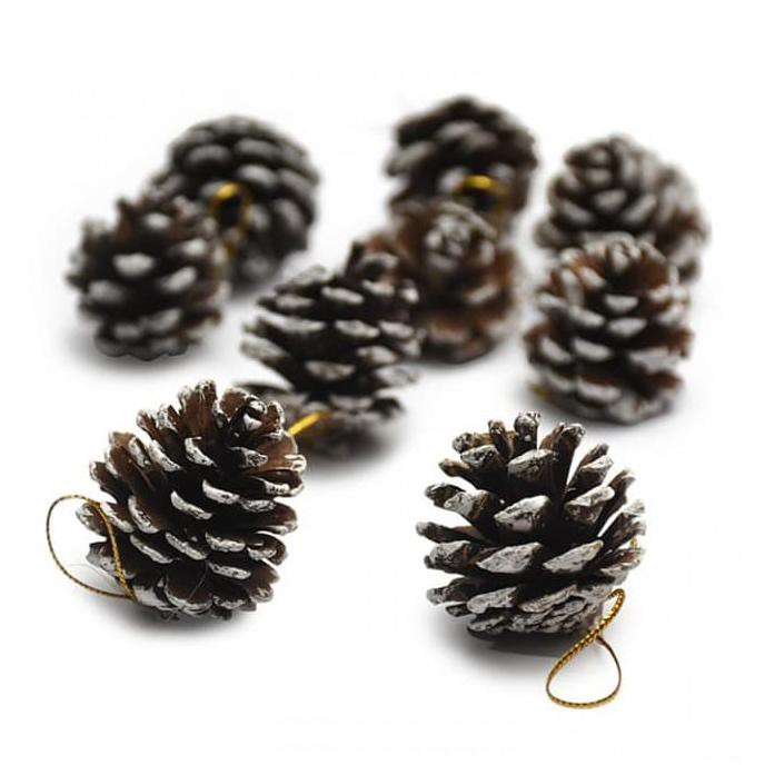 Hiasan Garland Wreath Ranting Pinus 2.7m untuk Hiasan Pohon Natal   Shopee Indonesia