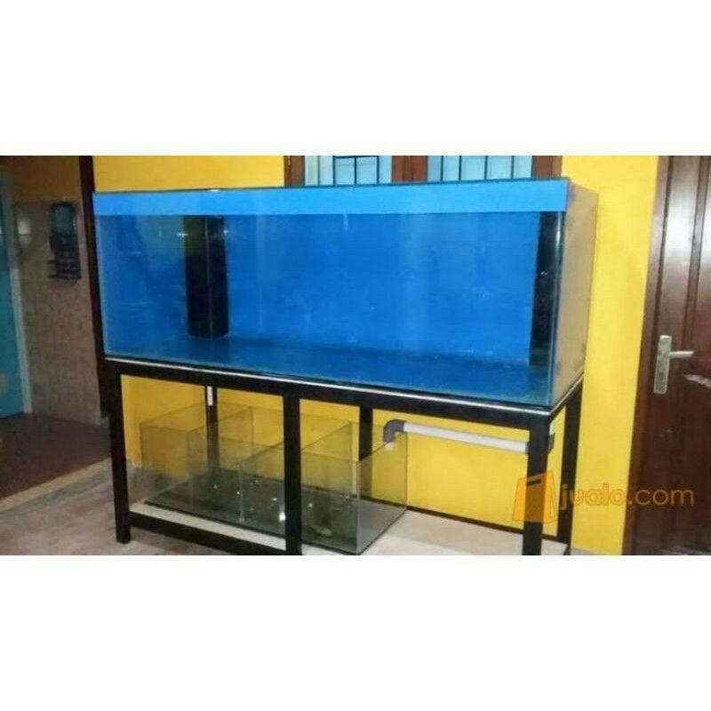 stickerbiru/ bacground aquarium biru skotlet aquarium