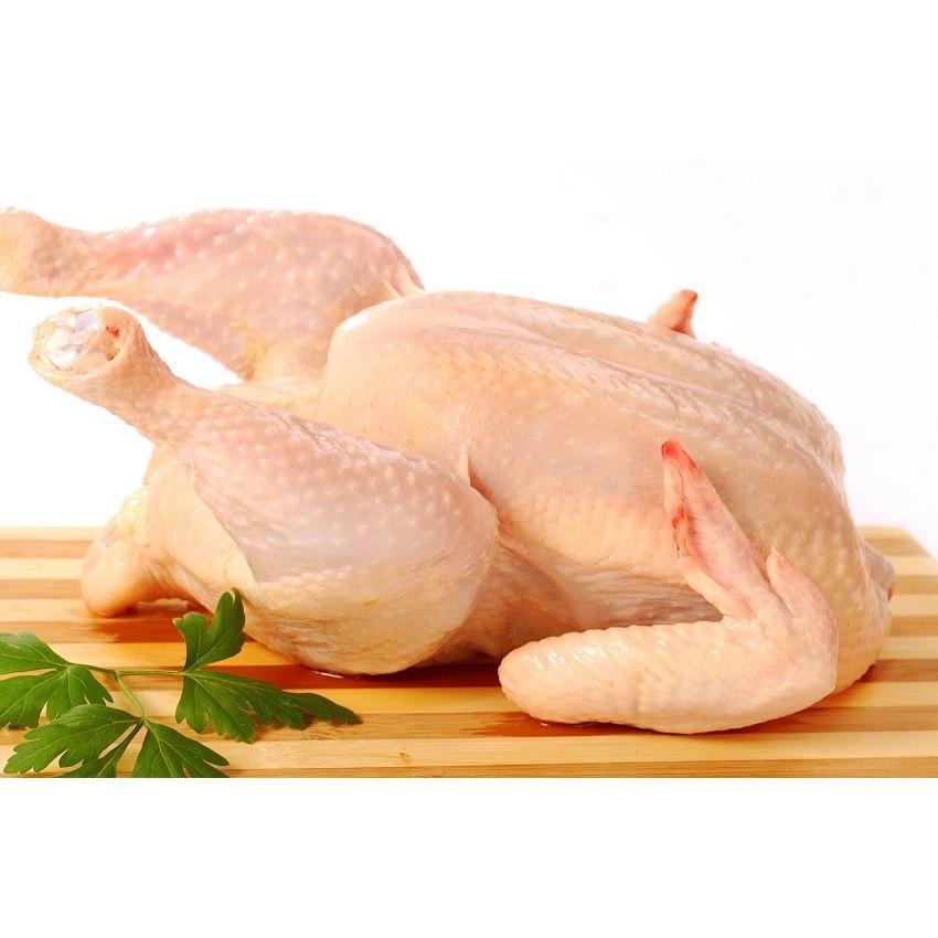Daging Ayam Kampung Asli 1 Ekor Fresh Segar Kiloan Denpasar   Shopee  Indonesia