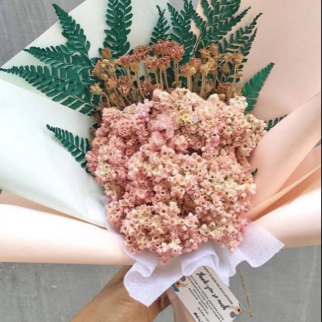 Bouquet Edelweis Pink Bunga Edelweis Dengan Warna Pink Mix Aster Spray Dan Daun Pakis Hijau Cantik Shopee Indonesia