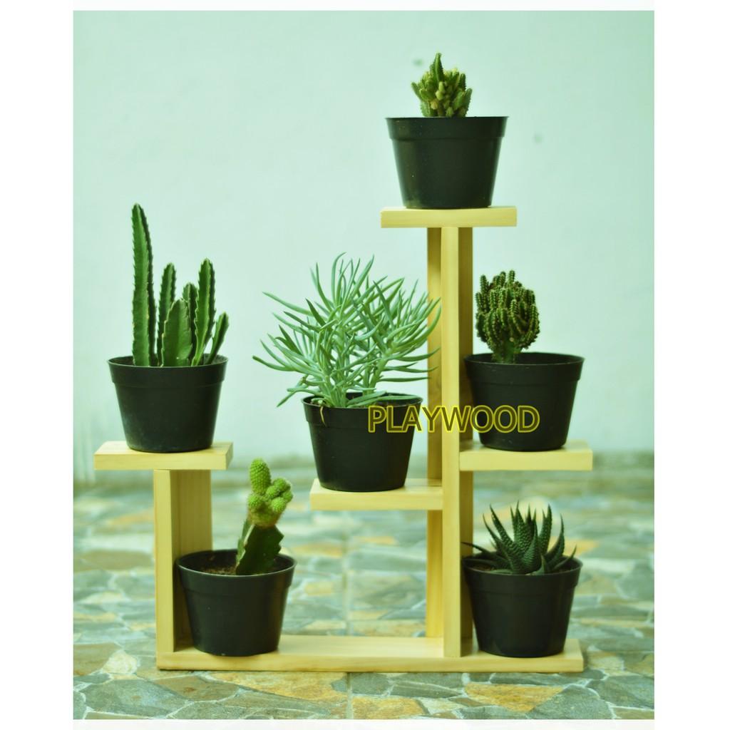 Rak pot bunga kayu mini kaktus hias | Shopee Indonesia