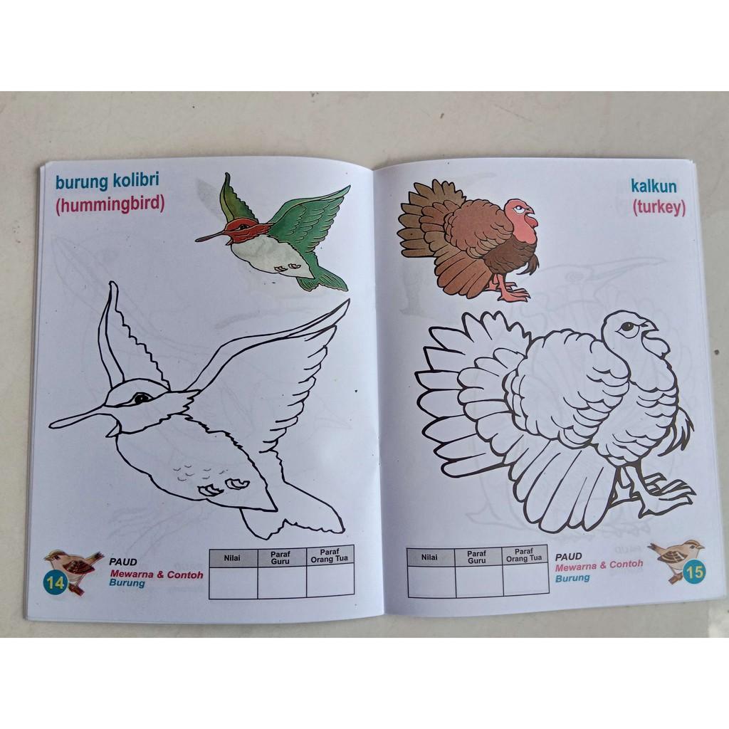 TERLARIS Seri Mewarnai PAUD Aneka Burung 1&2