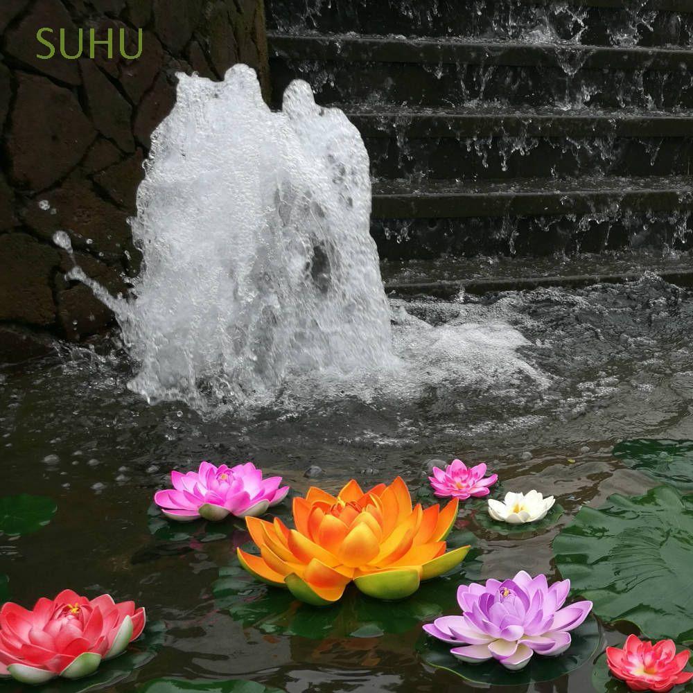 castella77 5PCS Lotus seed benih bunga teratai flower biji tanaman air aquascape   Shopee Indonesia