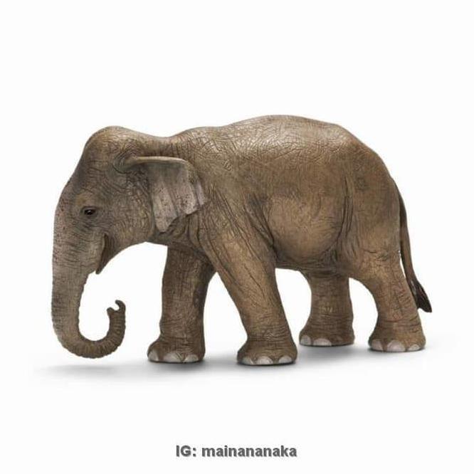 New Figure Miniatur Pajangan Boneka Patung Leich Gajah Asia Betina
