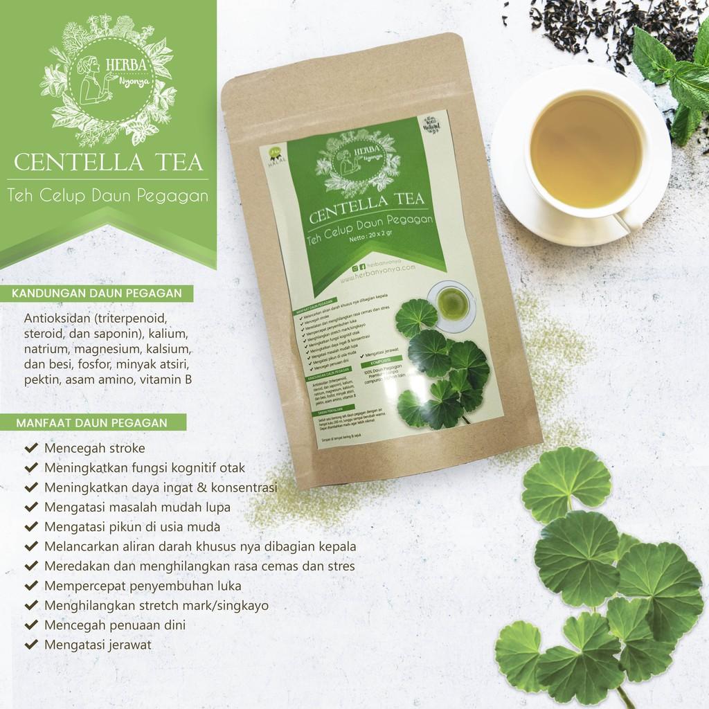 Mencegah Stroke Pikun Teh Celup Daun Pegagan Centella Tea Herba Nyonya 100 Natural Shopee Indonesia
