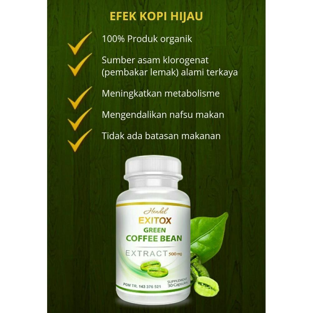 Green Coffee Bean Hendel Exitox Shopee Indonesia Kopi Hijau Diet Alami