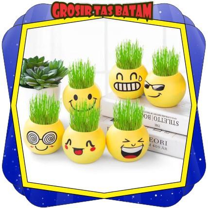 Gtb R067 Pot Bunga Hias Lucu Mini Motif Emoticon Untuk