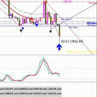 Binary options trading graphs of polynomial functions bet on nfl super bowl