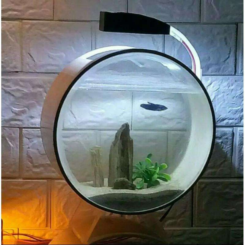 Aquarium Soliter Ikan Cupang Dan Ikan Kecil Lainnya Diameter Pvc 20cm Shopee Indonesia