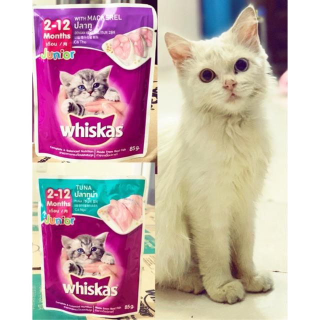 Whiskas Junior Makanan Anak Kucing Usia 2 12 Bulan Shopee Indonesia