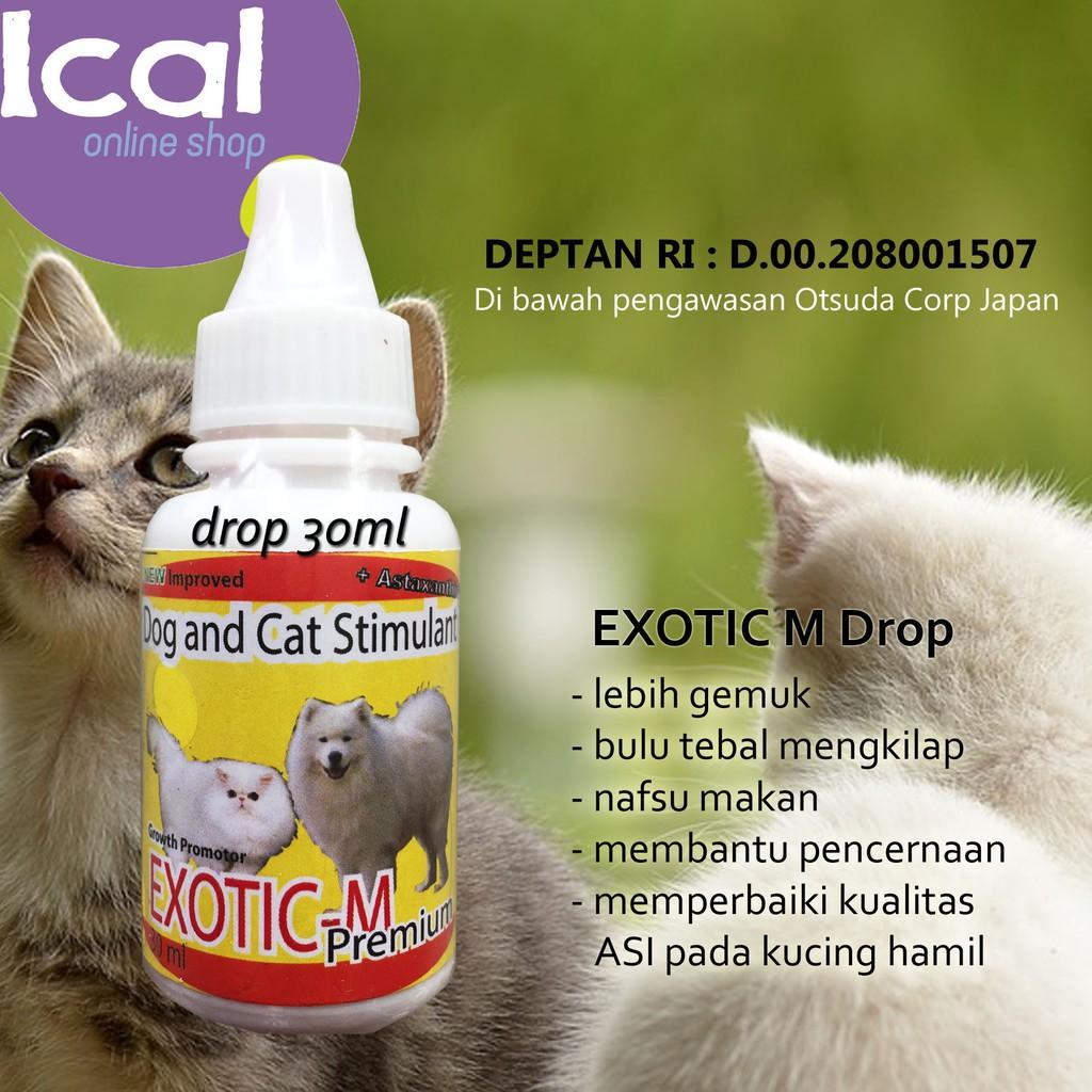 Vitamin Kucing Exotic M Drop Baik Untuk Kitten Dan Kucing Hamil