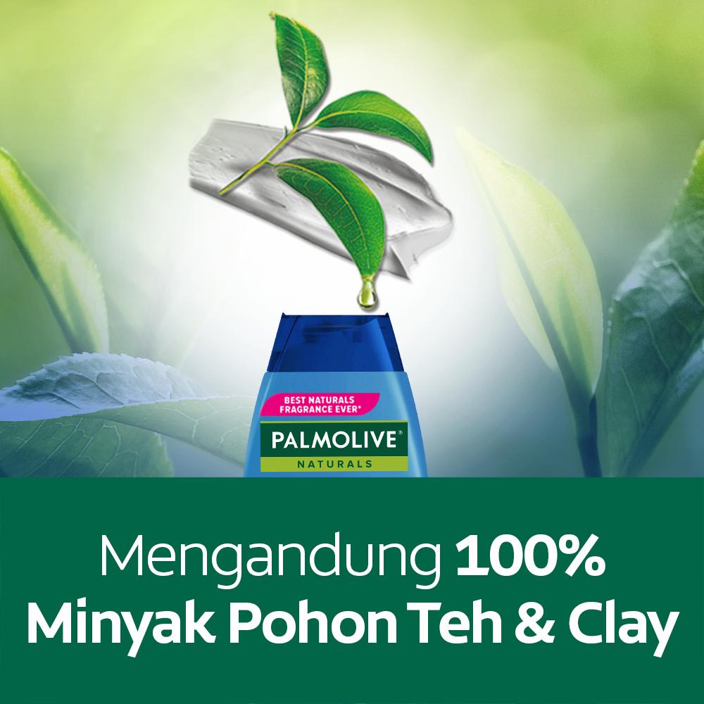 Palmolive Naturals Shampoo & Conditioner Anti Dandruff 180ml - Shampo Kondisioner (4pcs)-3
