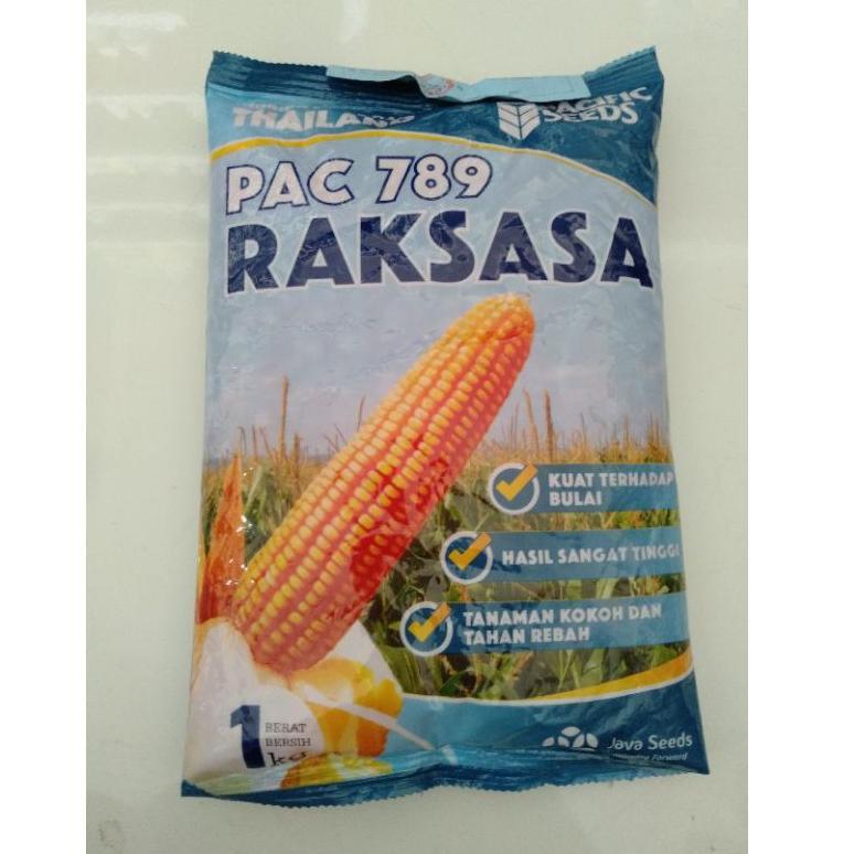Benih Jagung hibrida PAC 789 RAKSASA 1Kg Pacific Seeds (ART. 0645)