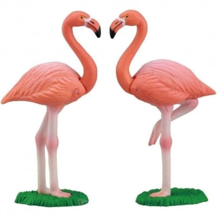 19+ Hewan flamingo terbaru