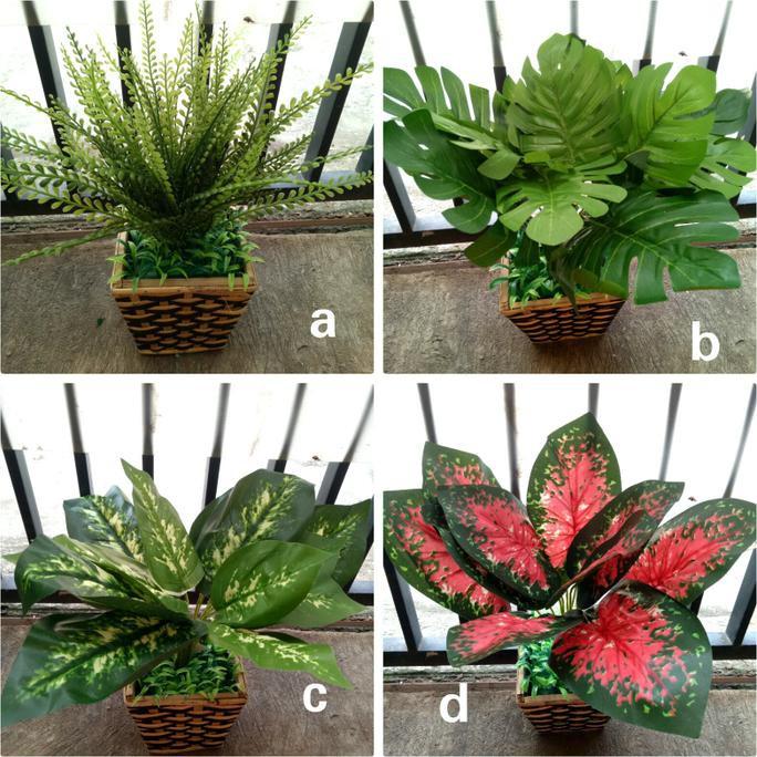 Bunga Keladi Palsu Pot Rotan Artificial Tanaman Shopee Indonesia