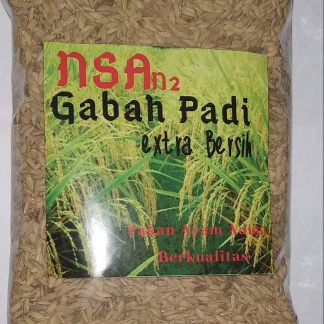 Gabah Padi Makanan Ayam Jago Shopee Indonesia