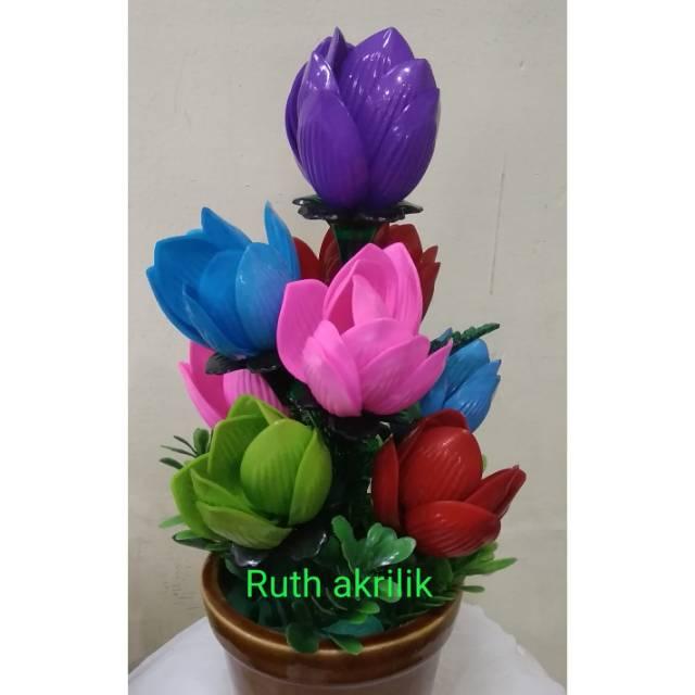 Bunga Tulip Warna Warni Shopee Indonesia