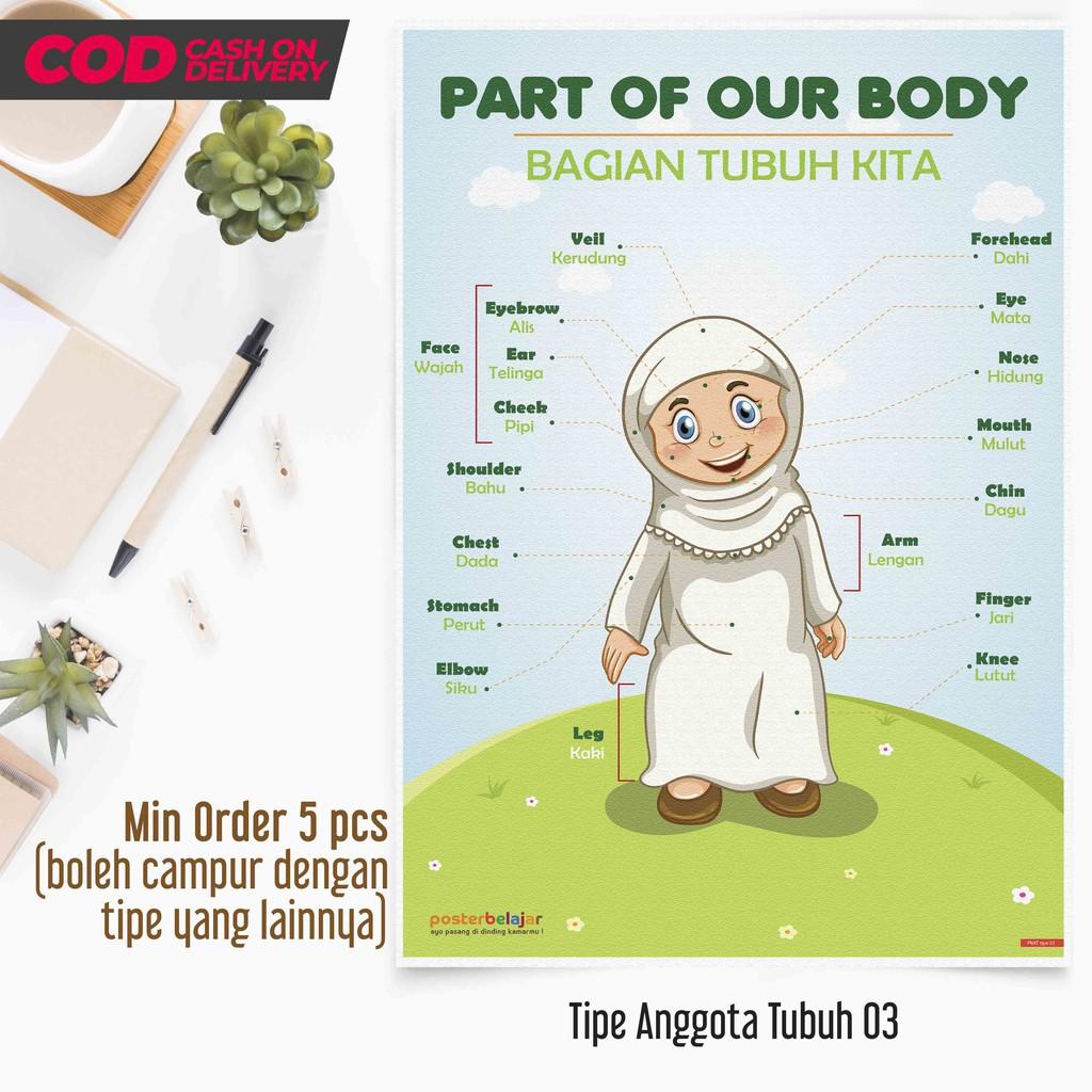Posbel Poster Belajar Anggota Tubuh Tipe 03 Poster Pendidikan Mainan Edukasi Edukatif Anak Tk Sd Shopee Indonesia