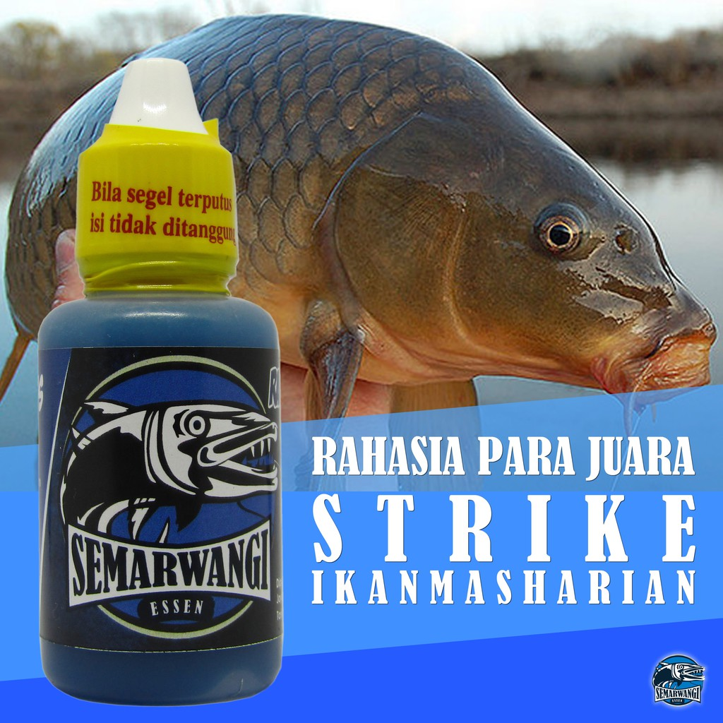 Semarwangi Essen Ikan Mas Harian Lomba Kilo Gebrus Segala Cuaca 30ml Shopee Indonesia