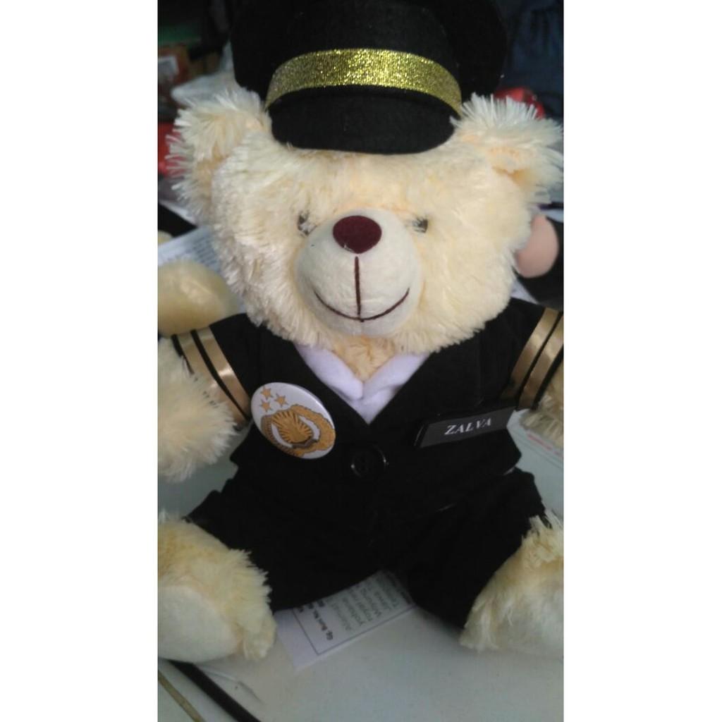 UPDATE BONEKA BERUANG TEDDY BEAR CHUBBY PROFESI PILOT LUCU BANGET BONEKA  PALING MURAH DAN TERBARU  c61c76187b
