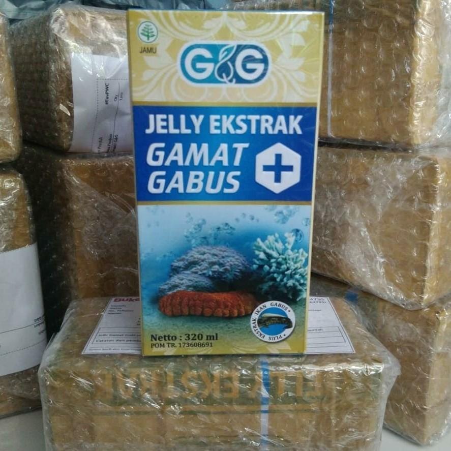 Gg Jelly Gamat Gabus Promo Beli 4 1 Khusus Bulan Ini Shopee Gng Indonesia