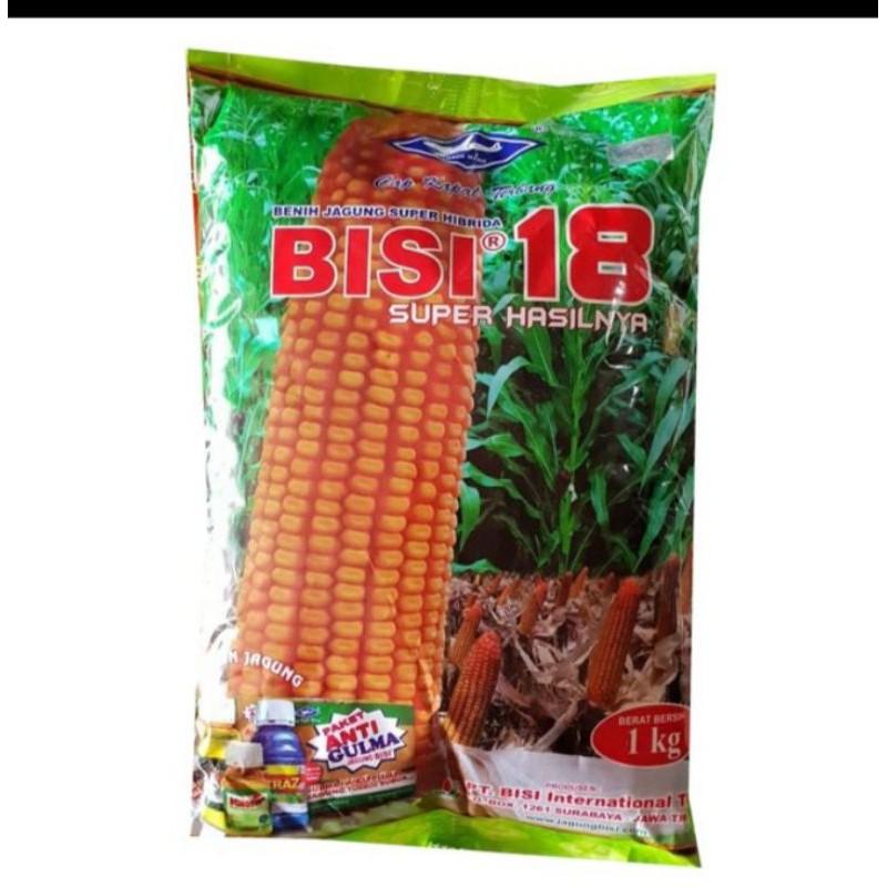 Jagung BISI 18