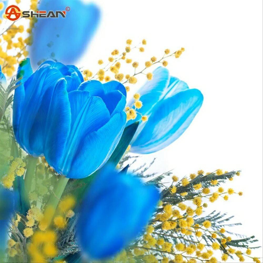 Bibit Tanaman Bunga Tulip Biru Rare Blue Tulip Benih Bibit Tanaman Hias Untuk Dekorasi Rumah Shopee Indonesia
