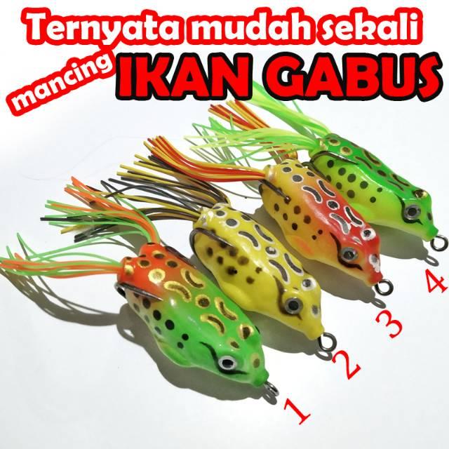 Umpan Kodok Untuk Ikan Gabus Toman Shopee Indonesia