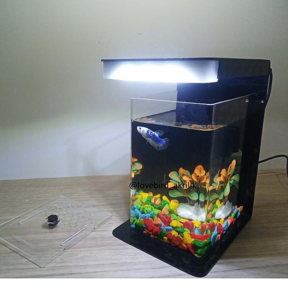 Stok Terbatas Betta Fish Tank Aquarium Mini Akrilik Mini Aquascape Aquascape Acrylic Mini Aqu Shopee Indonesia