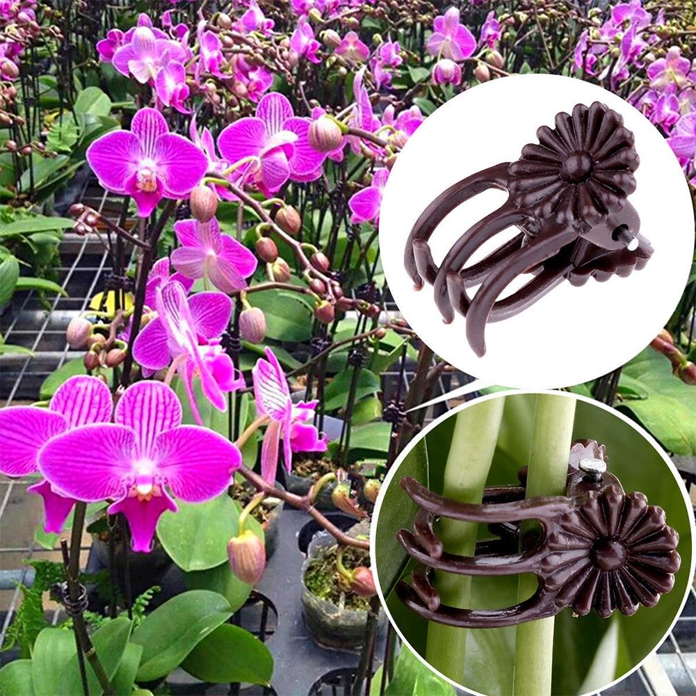 100Pcs Plant Support Clips Garden Clips Flower Orchid Stem Vine Support Clips
