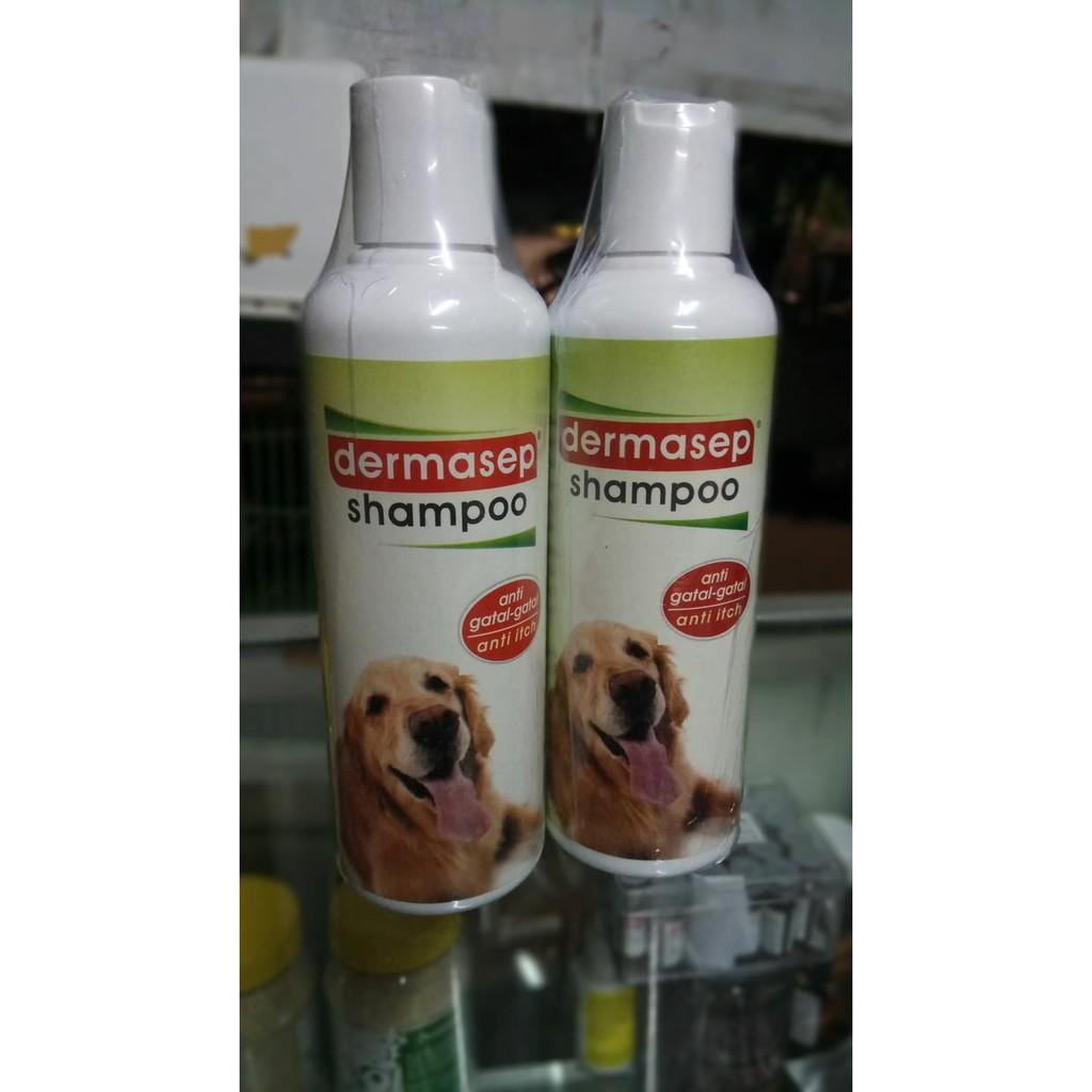 Dermasep Shampoo Sampo Kutu Caplax Anjing Daftar Harga Terkini Doris Bedak Pembasmi Dan Perawatan Kulit Isi 100 G Exlusive Dog Shampo Terlaris Shopee Indonesia